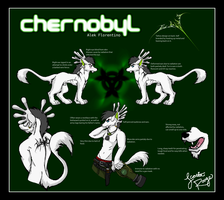 REFERENCE SHEET: Chernobyl by ScottieRouge