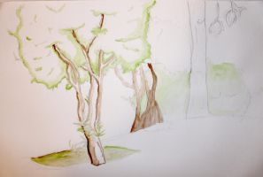 Trees Watercolor Exercise by SpiderTech