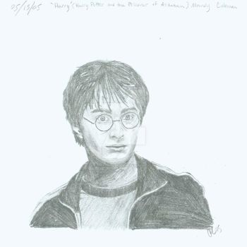 Harry Potter2 by Charmedsoul