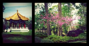 Of Temples and Trees by HA91
