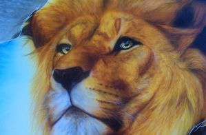 LION DETAIL by DMaerografie