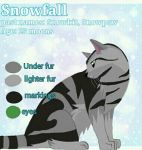 Snowfall -Free Warrior Adopt- CLOSED by Hawkfeather376