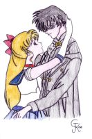 Sailor Moon and Tuxedo Kamen by Princess-Lita
