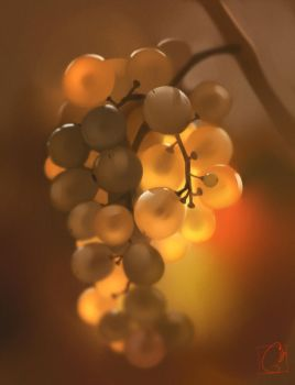 Grapes by GaudiBuendia