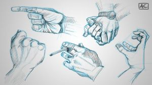 Hand studies by sorryPhillip