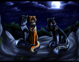 Night by Schattenherz2203