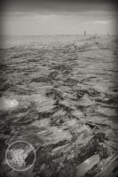 BW Lake Michigan Ice by WolverineAC