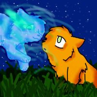 Warriors Firestar and Cinderpelt by xXDarkest-WolfXx