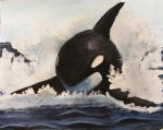 Orca by greenstables