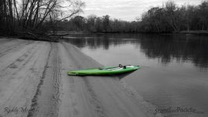 Savannah River SUP Paddle by PaddleGallery