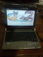 My netbook by fabiomarca