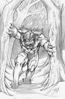 Sabretooth request by acook