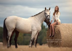 Girl And Her Horses by A-Motive