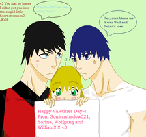 Happy Valentines Day by sonicnshadow321