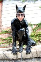 Catwoman 1 by ComfortablyEccentric