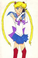 Sailor moon and cat by albinoblackdude9