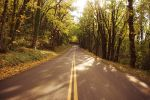 Fall Road by tiannatree