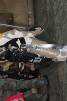 Raiden from Metal Gear Solid 4 by MadcatDrannon