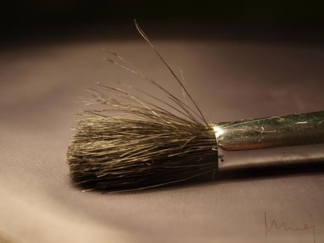 Just a brush... by Ioang