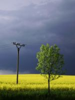 electricity by GabrielWings