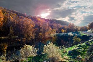 Coons Canyon by redvideo