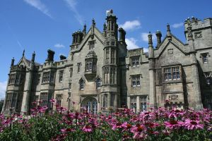Margam castle and pink by swanseamale47
