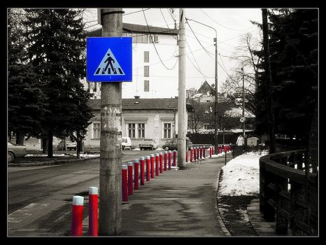 Follow the red path  halcyonll by Cluj
