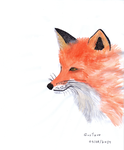 Fox - watercolor by Gustavohis