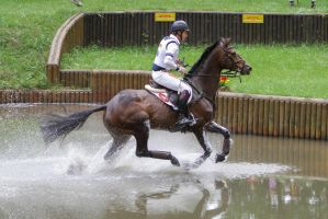 3DE Cross Country Water Obstacle Series X/22 by LuDa-Stock