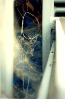 Spider Web 6 by MegBethany