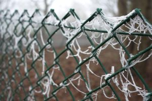 Frozen Fence by syrus