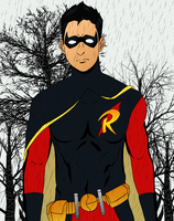 Robin by justinpooh