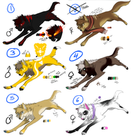 Adoptables SET 4 by Queen-Heaven