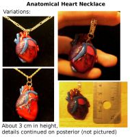 Anatomical Heart Necklace. by yourcommonmuggle