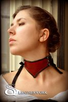 Black and Red Classic Collar by SqLeatherwork