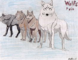 Wolfs Rain by darkangel801