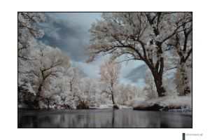 IR river shot 57 by finepix-at