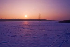 Winter Sunset by Justine1985