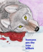 Humans are the True Killers by NatsumeWolf