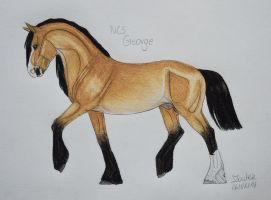 NCS George (new reference) by Salvada