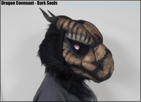 Dark Souls Cosplay - Dragon Covenant Preview by SnowstormSpirit2285