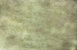 Mossy Concrete by CL-Stock