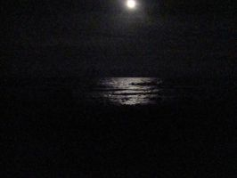 Moonlight Over the Ocean by KRhanson