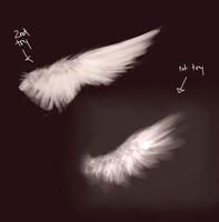 Wing practice wtf idk by FireFlufferz