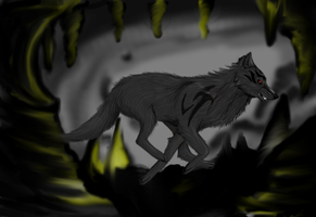 Dark Wolf normal by XxWaterDiamondxX