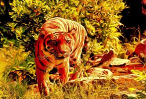 Tyger - Tyger by montag451