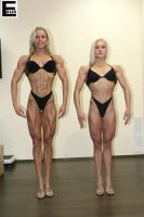 Female Muscle Comparison by edinaus