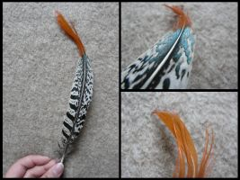Lady Amherst's Pheasant Feather by CabinetCuriosities