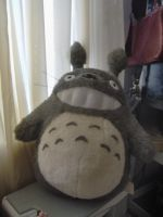 totoro by electricjesuscorpse