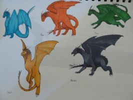 All of the Inheritance Dragons by Hogia